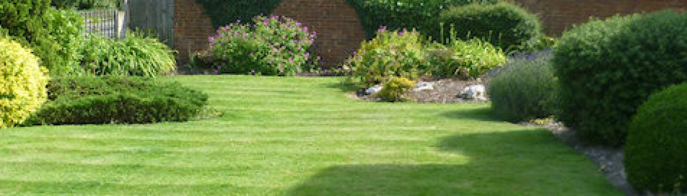 Mint Green Gardens