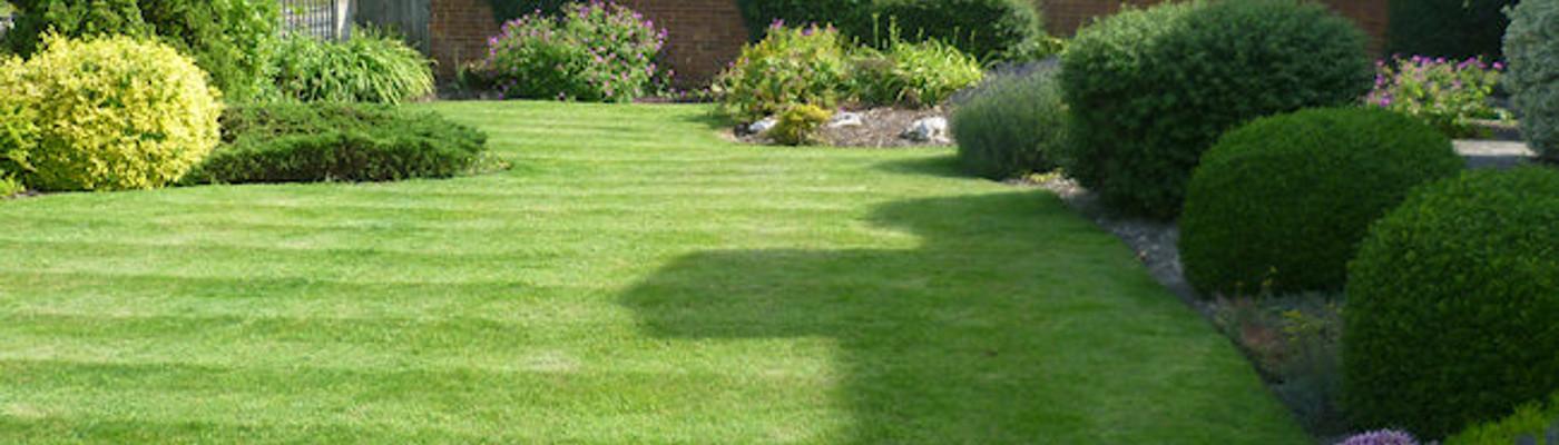 Mint Green Gardens garden services by Leamington gardener, Jon Chinery