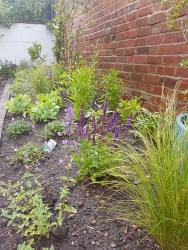 Regent Villa garden, Leamington Spa - After